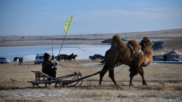 有學者擔心,內蒙古也出現西藏新疆化的問題。(路透社資料圖片)